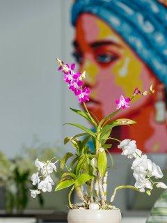 Malaiwana Penthouse - Flower decor