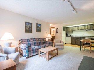 Ten Mile Haus Condominium B3