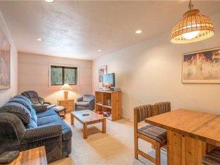 Copper Valley Condominium B3