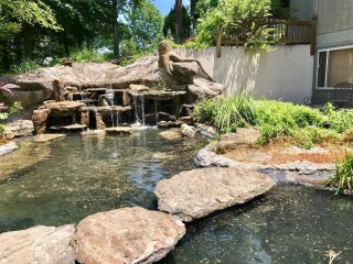 Waterfall Walkout Retreat! 3-4 Bdrm & Full Kitchen