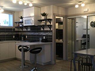 Loft neuf 40m2, cuisine,salle de bain,double lit, parking,entree independante
