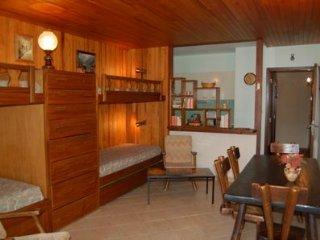 Residence Grands Montets 110