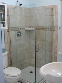 Glass & Tile Shower in Bathroom