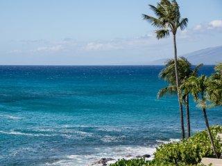 Napili Point C24 (Ocean Front Cabana)
