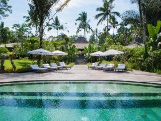 Spectacular 8bdrs Villa Ubud - Villa Nag Shampa