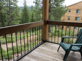 3 bedroom 2 bathroom mountain condo