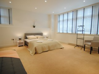 City Stay London - Cosy 2 Beds Apartment Split Level near Big Ben