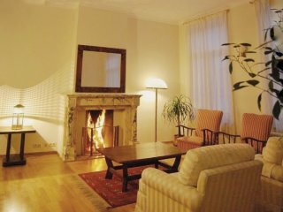 Elegant and very spacious furnished one-bedroom apartment
