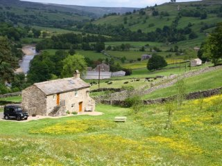 Throstle Nest Barn, gorgeous cottage near Crackpot, Swaledale, with own field