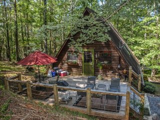 AT A SNAILS PACE- ADORABLE 2 BR/2BA CABIN IN WOODED SETTING WITH SAT TV, WIFI