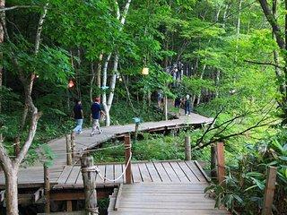 perfect place for naeba ski resort and fuji rock