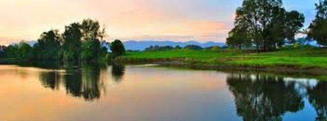 The Bellinger River