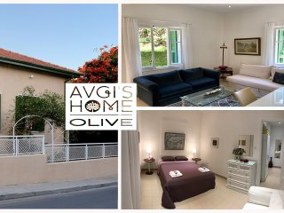 OLIVE GARDEN Apartment  at Avgi's Home Limassol Cyprus