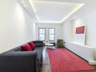 Spacious Spectacular Charing Cross apartment in Westminster with WiFi, integrate
