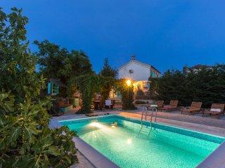 Stara Maslina Villa with a pool