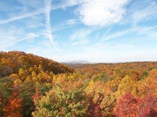 Fall Views from Big Bear Lodge