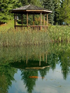 Resort catch and release fishing pond with gazebo.