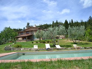 Huge Villa with pool& basketball in the olive trees and vineyards of Chianti :)
