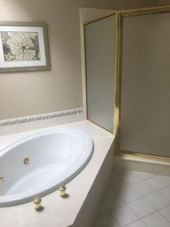 Master Bathroom Tub and Shower