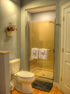 Stand Up Shower in Master Bathroom