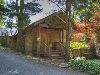 FREE ADMISSIONS TO POPULAR ATTRACTIONS!-Willow Wood Cabin-4 BR Cabin w/HOT TUB,