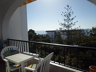 Las Palmeras 31-M, Apt. 2 Bedrooms, Pool, Torrecilla Beach