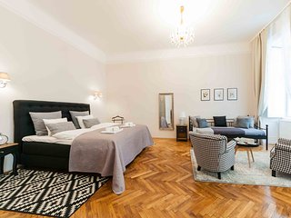ElegantVienna Symphonia large apartment with A/C near the cathedral 1st district