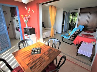 Studio vue mer Caraibes, clim, belle terrasse