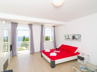 Apartments Villa Silvana-Deluxe Studio Apartment with Balcony and Sea View (AP1)
