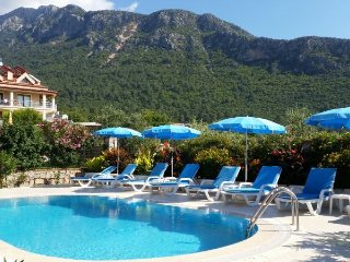 Detached villa in Ovacik - private pool, sleeps 9