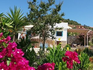 Lemon Tree Cottage A beautiful summer house just 5 min from Finikounda.