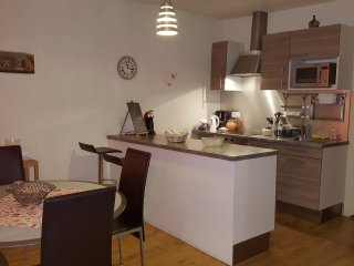 Appartement 45 M carre  Turenne Petite venise Colmar Hyper centre