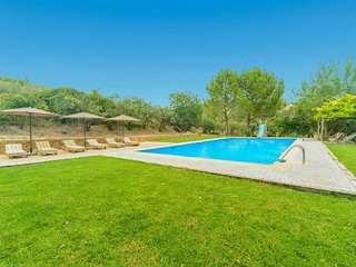 WIFI, BIG SWIMMING POOL, CENTER ANDALUCIA, MILL, JACUZZI