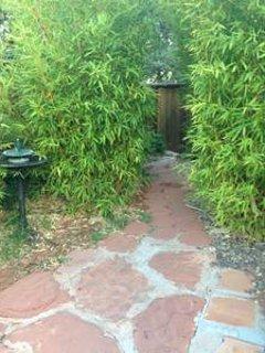 Path to hot tub thru the bamboo garden.