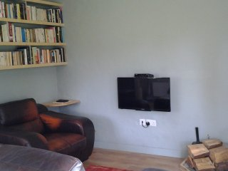 Lounge, lots of books, TV, leather sofas and wood burning stove