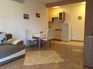 Nice apartment near Zrce beach