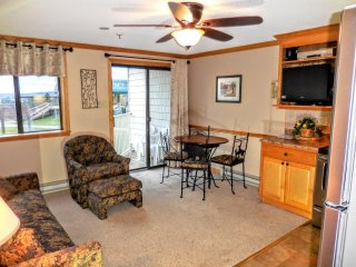 1BR/1BA Ski/Bike In & Out - Free Wi-Fi - Next to Slopes & Village - VERY NICE!