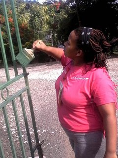 Villa Papillon volunteers and donations via Irie Kids, Inc. help with school renovations.