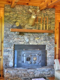 Wood Burning Stove/Fireplace