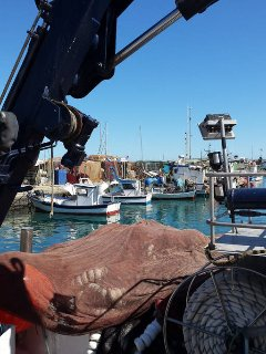 Some of Caleta s daily fishing boats .