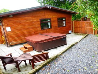 Primrose Lodge 7 with Hot Tub (H 2014)