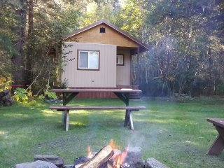 The Bristol Bay cabin! Brand new, cute 1 bd 1 ba, 450 sq ft cabin in the woods!