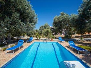 """The """"Olive Grove"""" pool villa (Estia villa)"""