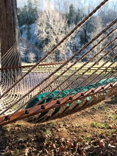 Hammock view to the river from the backyard.