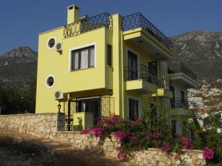 Stunning views, family villa with private pool, minutes from village centre