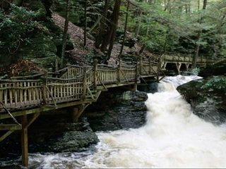Come stay in the beautiful Pocono Mountains!