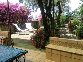 Villa Blugolconda  - garden and views in Sorrento