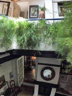 Atrium seen from below