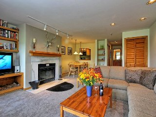 Highridge 2 bedroom on ski back trail/shuttle service with a sports center