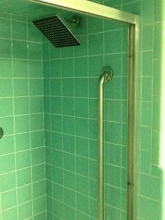 BA 3 Hall bath rainfall shower